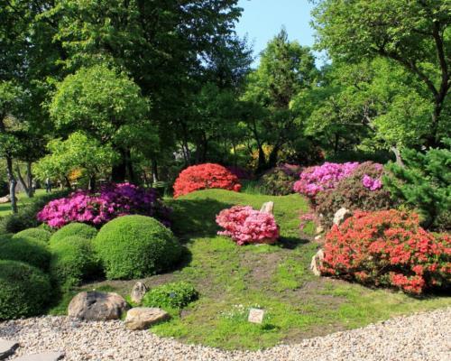 Ботанический сад Праги - увлекательное место для туристов
