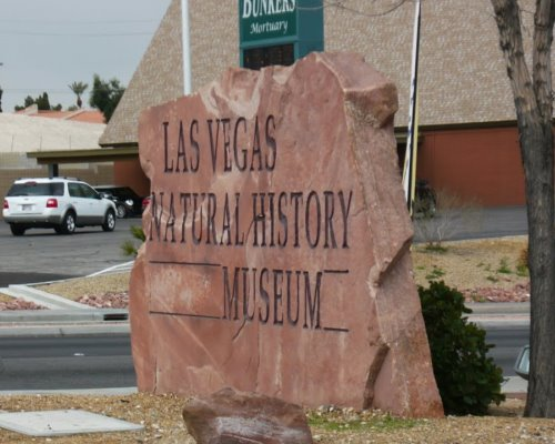 Музей естествознания Лас-Вегаса