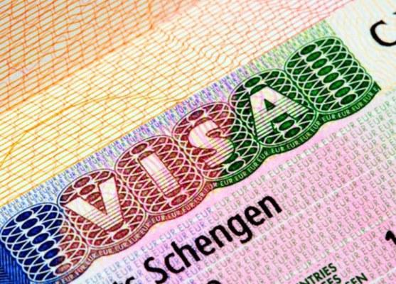 Шенгенская виза: как определиться с типом