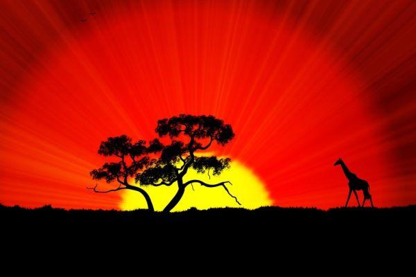 Туристические возможности «черного» континента